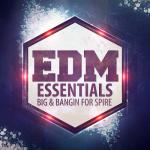 EDM Essentials - Future Banging Concert