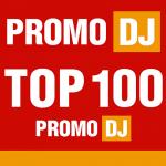 Promo DJ Top 100 Remixes Winter 2015-2016